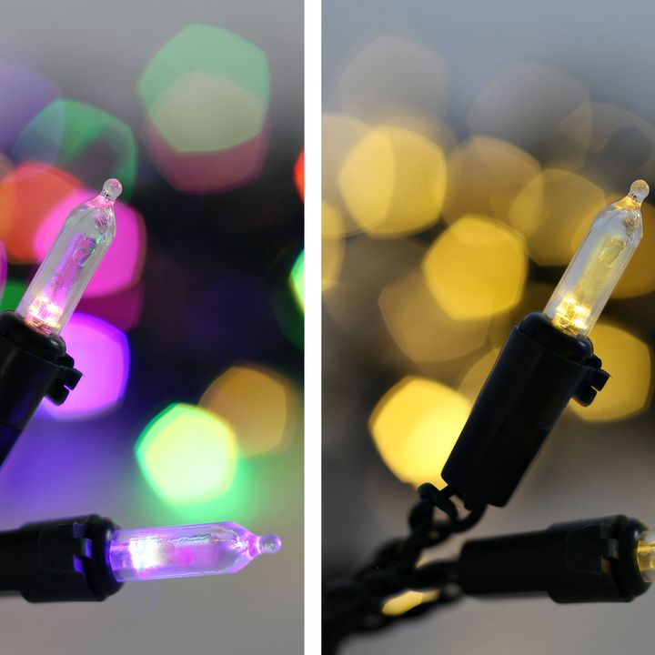Dual Color Option 100 LED Classic M5 Bulb Battery String Lights