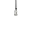 Alton Pendant, Satin Nickel